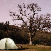 Backpacking in Henry Coe State Park, California - Salamanders, oak trees, and stars stars stars!! // WeAreAdventure.us