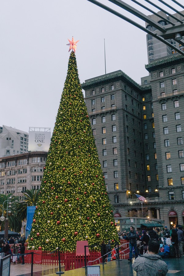 Wandering around San Francisco during the holidays - North Beach, Union Square and the Christmas tree, Chinatown // WeAreAdventure.us