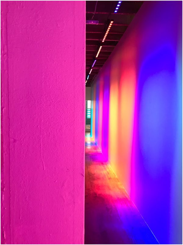 The Color Factory, San Francisco, California // WeAreAdventure.us